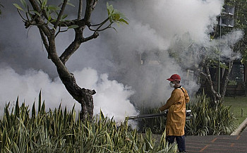 Bangladesh records worst outbreak of Dengue since 2000